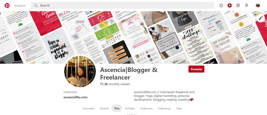 my Pinterest profile